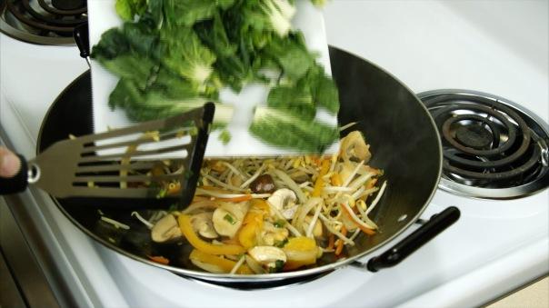 Chicken Chow Mein 17